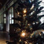 【12/22(日) 13:00-16:00】Christmas at Ama-mare 2019